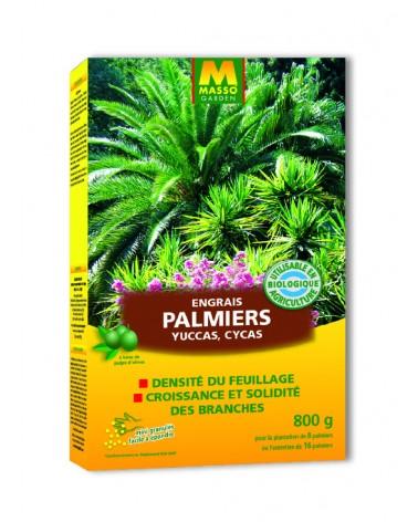 engrais palmiers