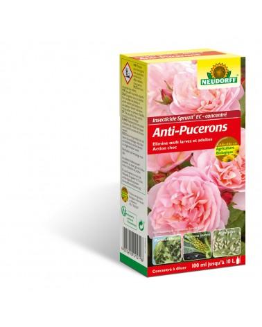 anti-pucerons rosiers