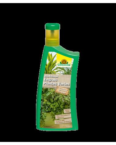 engrais plantes vertes