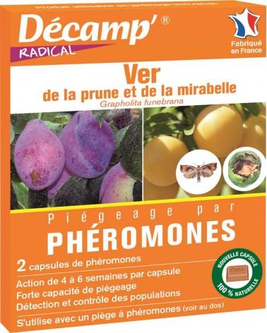 phéromone prune et mirabelle
