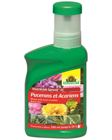 Insecticide puceron