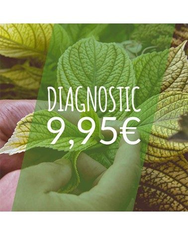 Diagnostic plante
