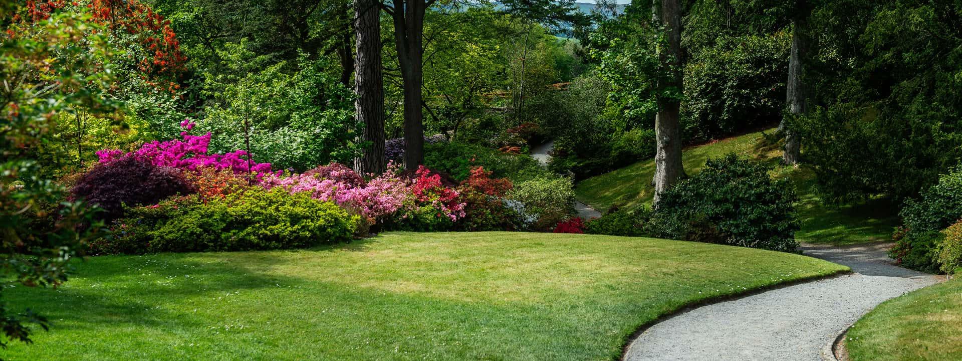 Un beau jardin en floraison entouré d'arbres